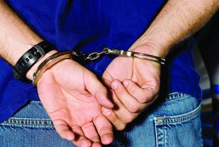 Un individu arrêté une deuxième fois pour des activités illégales