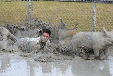 «Le participant s'essouffle beaucoup plus vite que notre cochon»