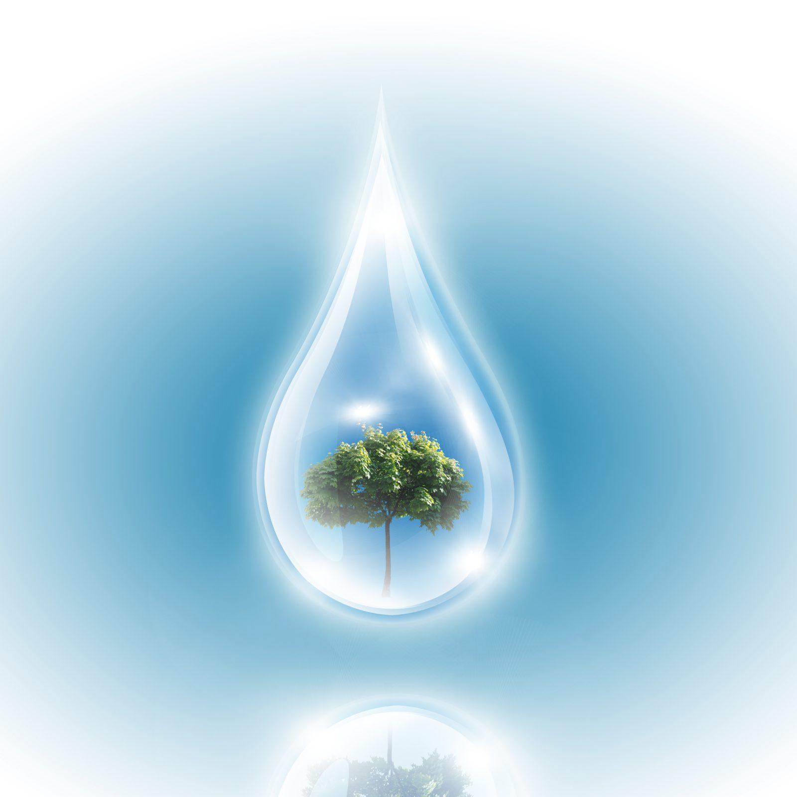 Les changements climatiques en mode solution du 25 au 29 janvier