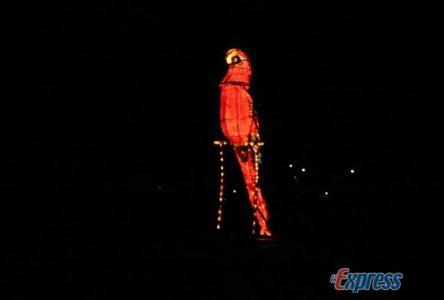 Festival du bateau illuminé