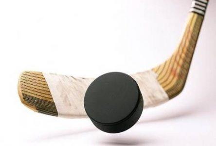 Le www.journalexpress.ca lance un pool de hockey