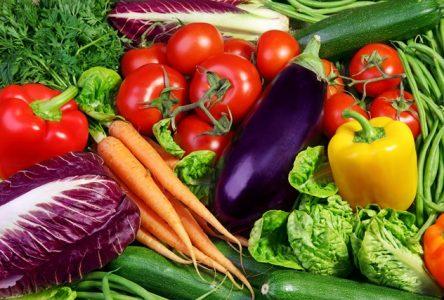Un panier de légumes frais, locaux et biologiques à chaque semaine de l'été