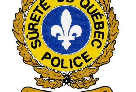 Arrestation de quatre jeunes hommes pour vols de véhicules