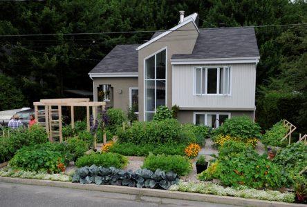 Le jardinier du potager urbain contestera le plan d'urbanisme