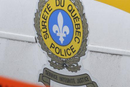 Introduction dans une résidence : trois jeunes individus arrêtés
