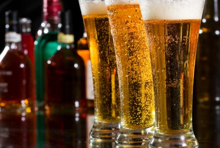 Les alcooliques anonymes organisent un mini-congrès virtuel
