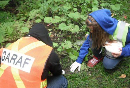 Les élèves de GARAF observent la biodiversité pour le Jour de la Terre