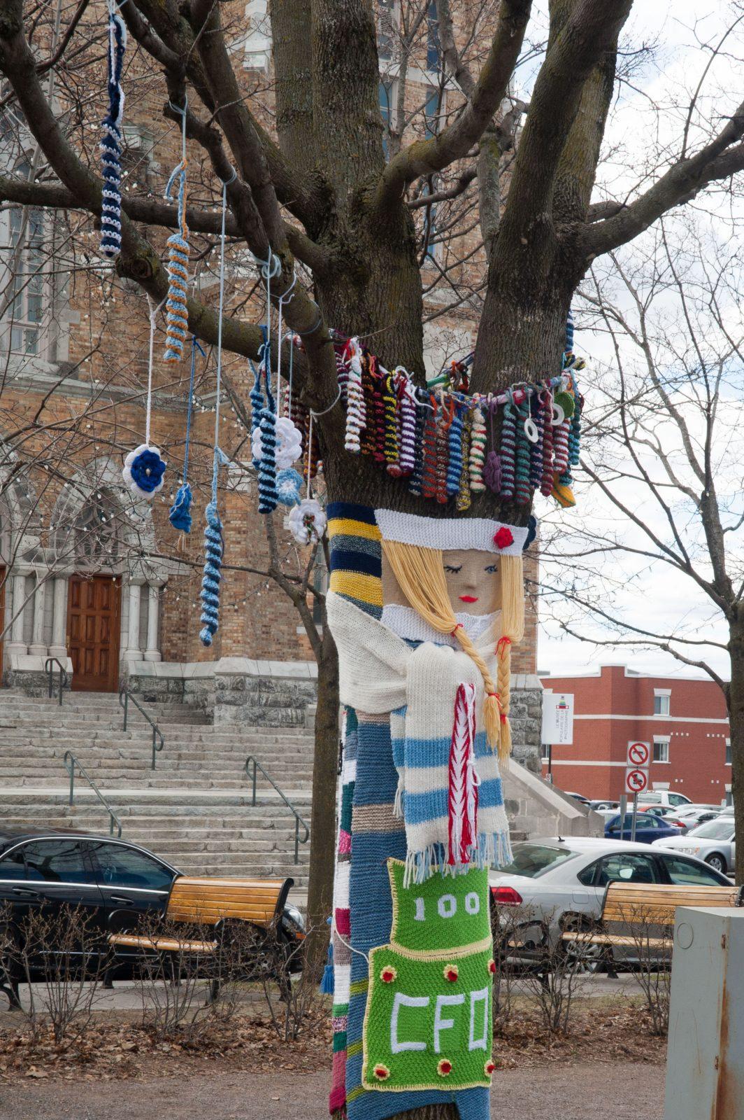 Des arbres ornés de tricots graffitis