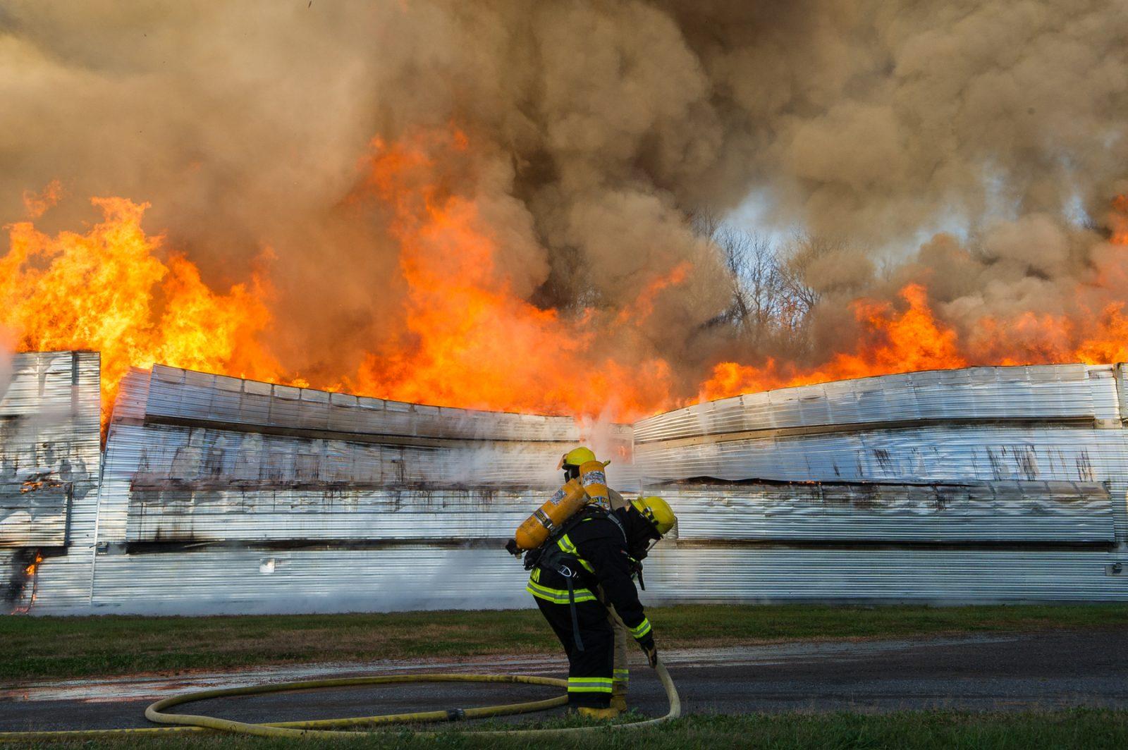 Des milliers de poules périssent dans un incendie (photos et vidéo)
