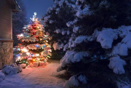 Féerie de Noël dans le quartier Saint-Joseph