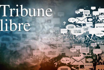 Le choix de faire arpenter ou borner sa terre boisée (Tribune libre)