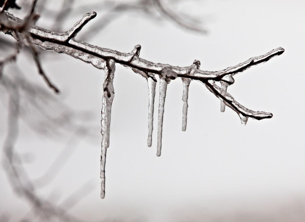 Avertissements de pluie verglaçante et de tempête hivernale