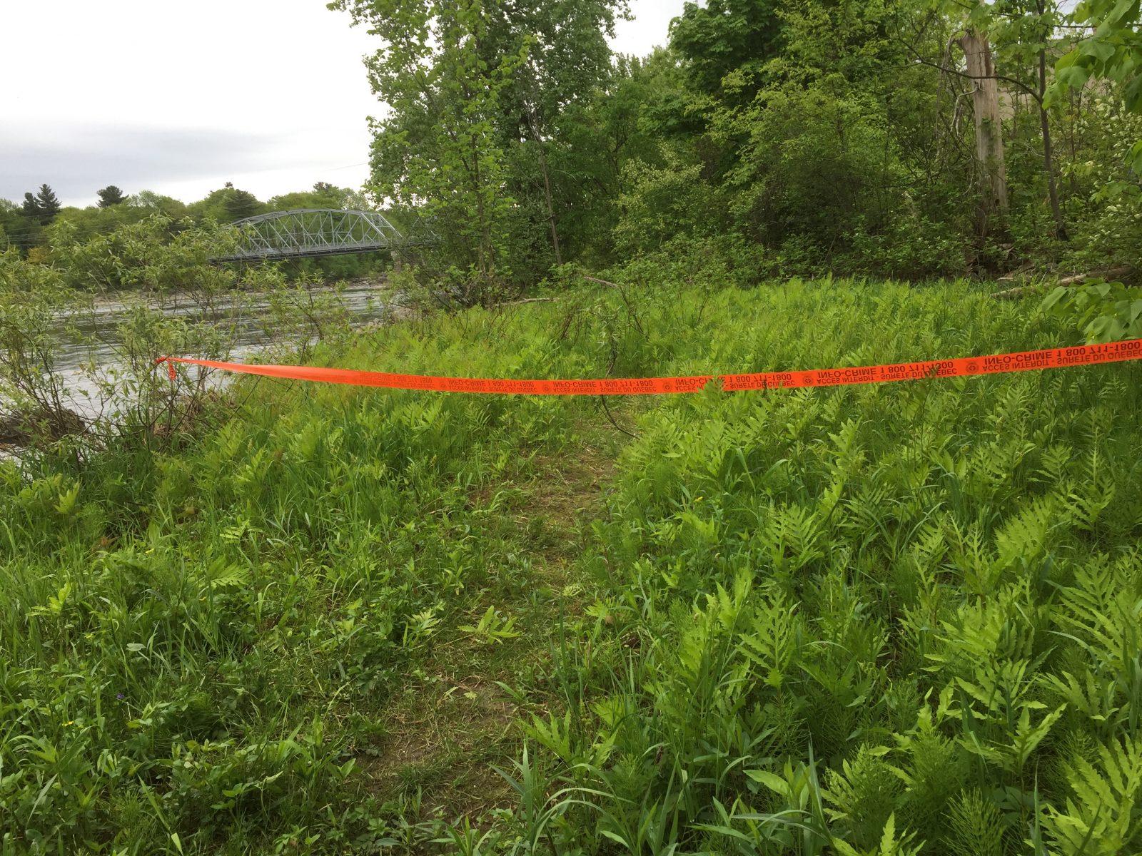 Ossements possiblement humains trouvés au parc Woodyatt