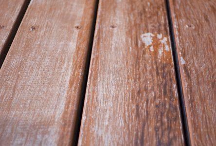 Transformation du bois et de l'ameublement: trois entreprises d'ici prennent le virage numérique