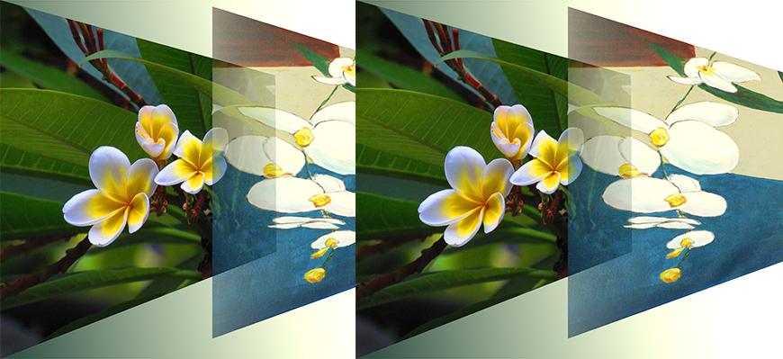 Découvrir la proximité des arts de la peinture et de la photographie
