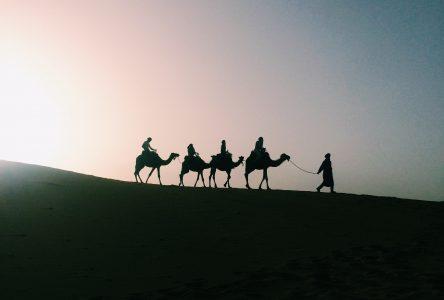 Mille et une étoiles dans le désert du Sahara