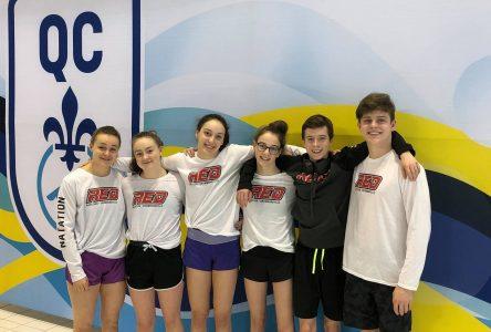 Les Requins très actifs aux championnats provinciaux