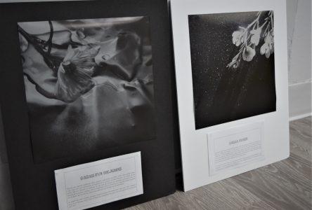 Des élèves du PAV exposent au Musée national de la photographie