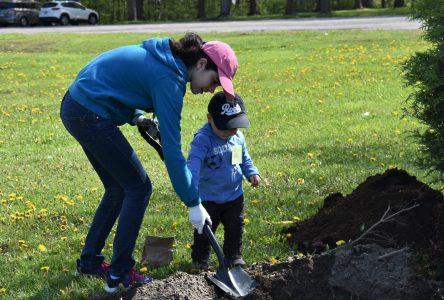 Les élèves de Marie-Rivier ont planté une soixante d'arbres