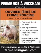Ouvrier(ère) de Ferme porcine