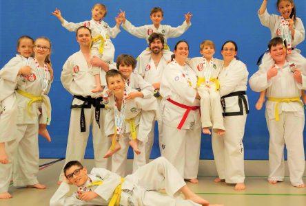 Une récolte impressionnante pour Phan taekwondo