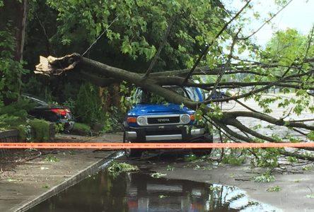 Orage violent : le viaduc sous le boulevard St-Joseph accessible (mise à jour)