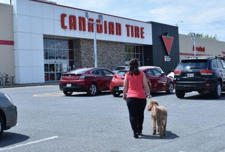 Canicule : les chiens tolérés au Canadien Tire de Drummondville
