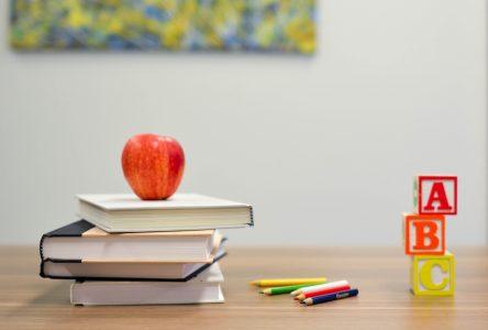 Ravages pédagogiques d'un virus