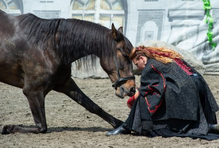 Les chevaux, le feu et la magie s'invitent à l'Amphithéâtre Saint-François (photos et vidéo)