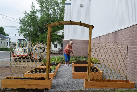 Le jardin collectif La Crémaillère est inauguré