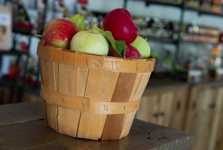 Le temps des pommes; le temps des souvenirs
