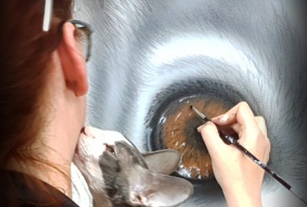 Les émotions animalières transmises par le pinceau d'Anne-Marie Noble