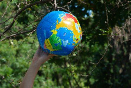La poésie au profit de l'environnement