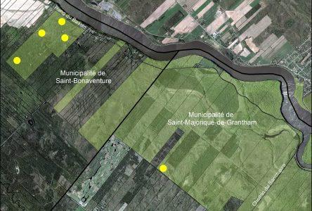 Forêt Drummond : la date de la séance d'information sur le projet de recherche connue