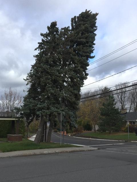 Le fort vent cause de nombreux bris à Drummondville