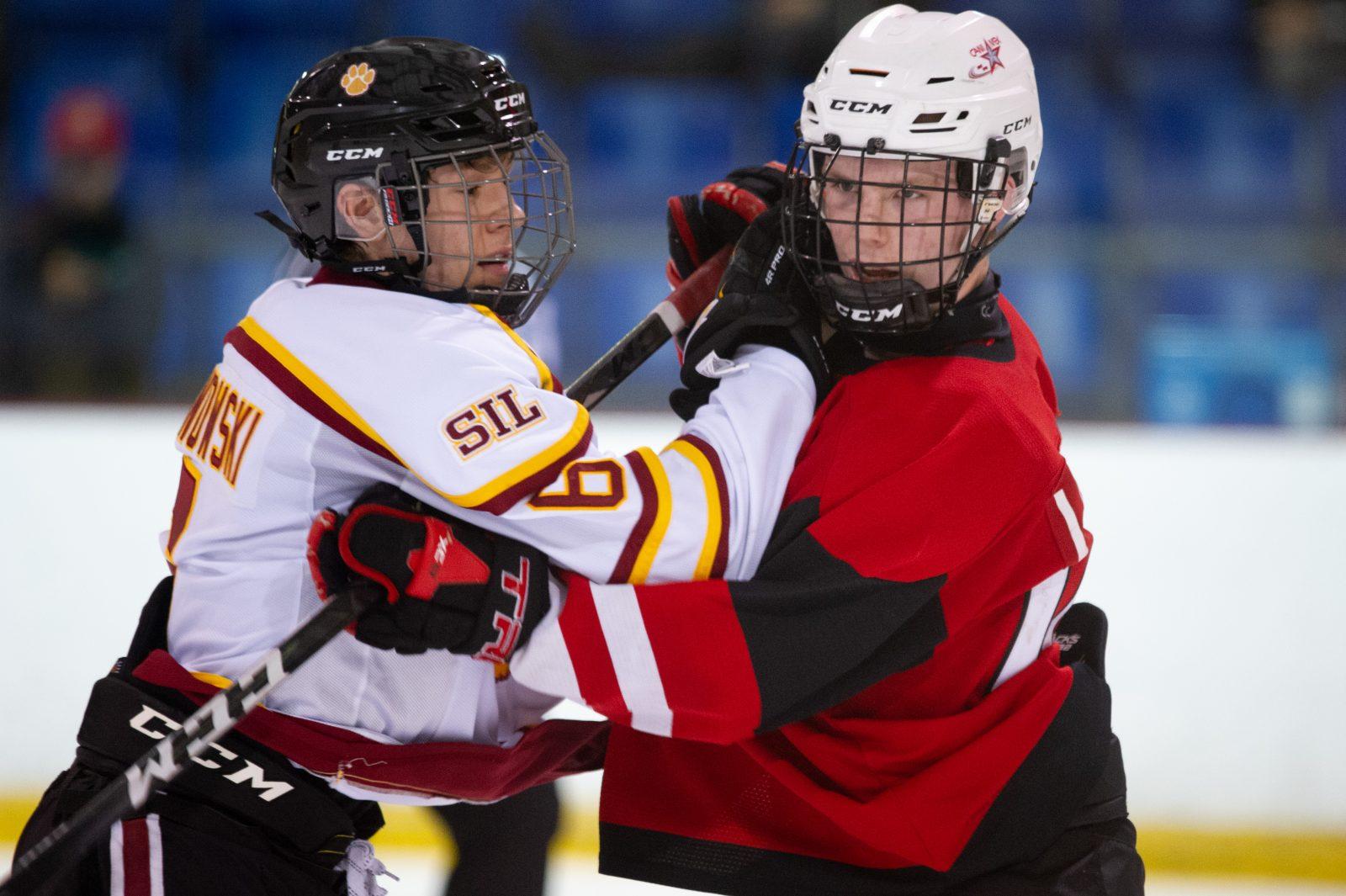 Coronavirus: Hockey Québec cesse ses activités
