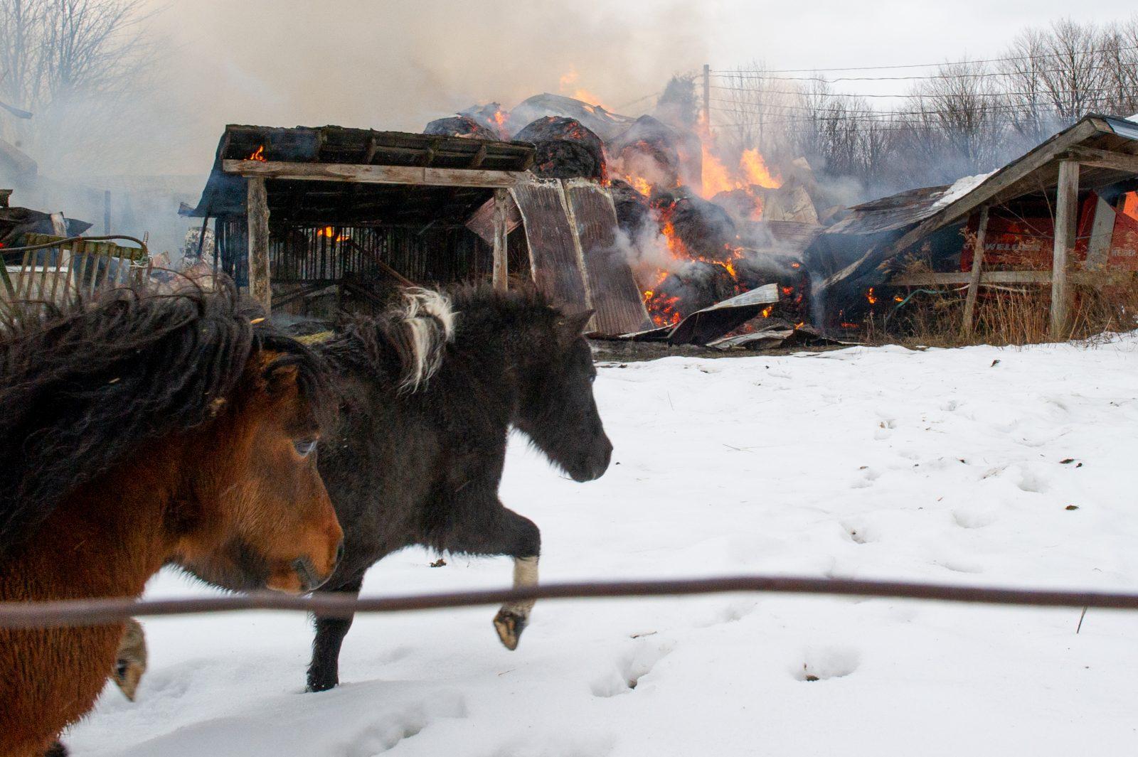 Un bâtiment agricole rasé par les flammes (photos)