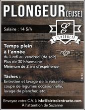 Plongeur(euse)