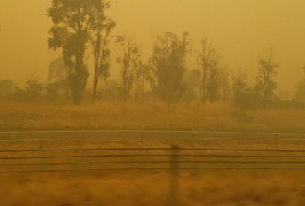 «Il pleut des cendres en Australie» – Samuel Gaudreau