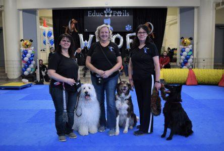 Un premier complexe canin ouvre ses portes à Drummondville