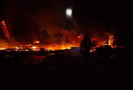 Une porcherie rasée par le feu à Wickham, une vingtaine de bêtes ont péri (mise à jour)