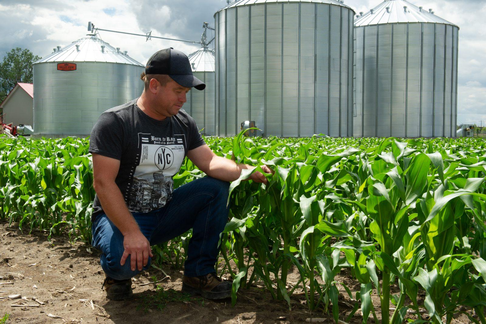 Les températures extrêmes affectent les agriculteurs
