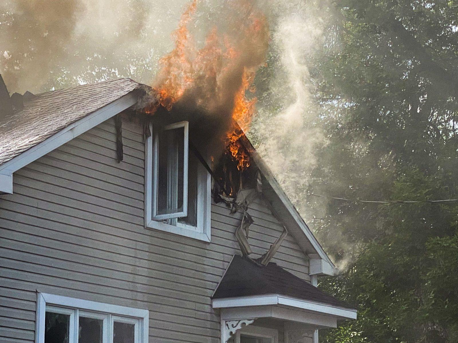 Un chat et un chien réanimés lors d'un incendie (photos et vidéo)