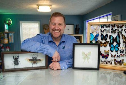 Nathaniel Leavey voit les insectes autrement