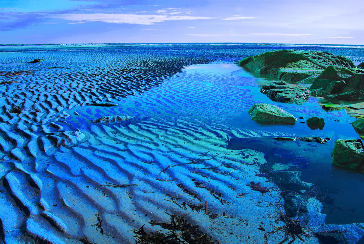 «Flux et Reflux»de la mer, selon l'artiste Ferron