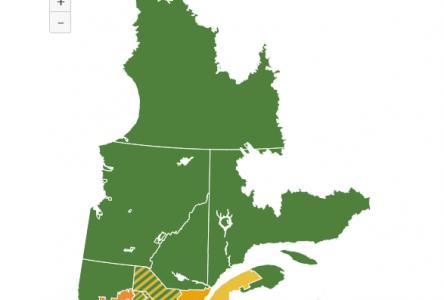 Le Centre-du-Québec bascule dans le jaune