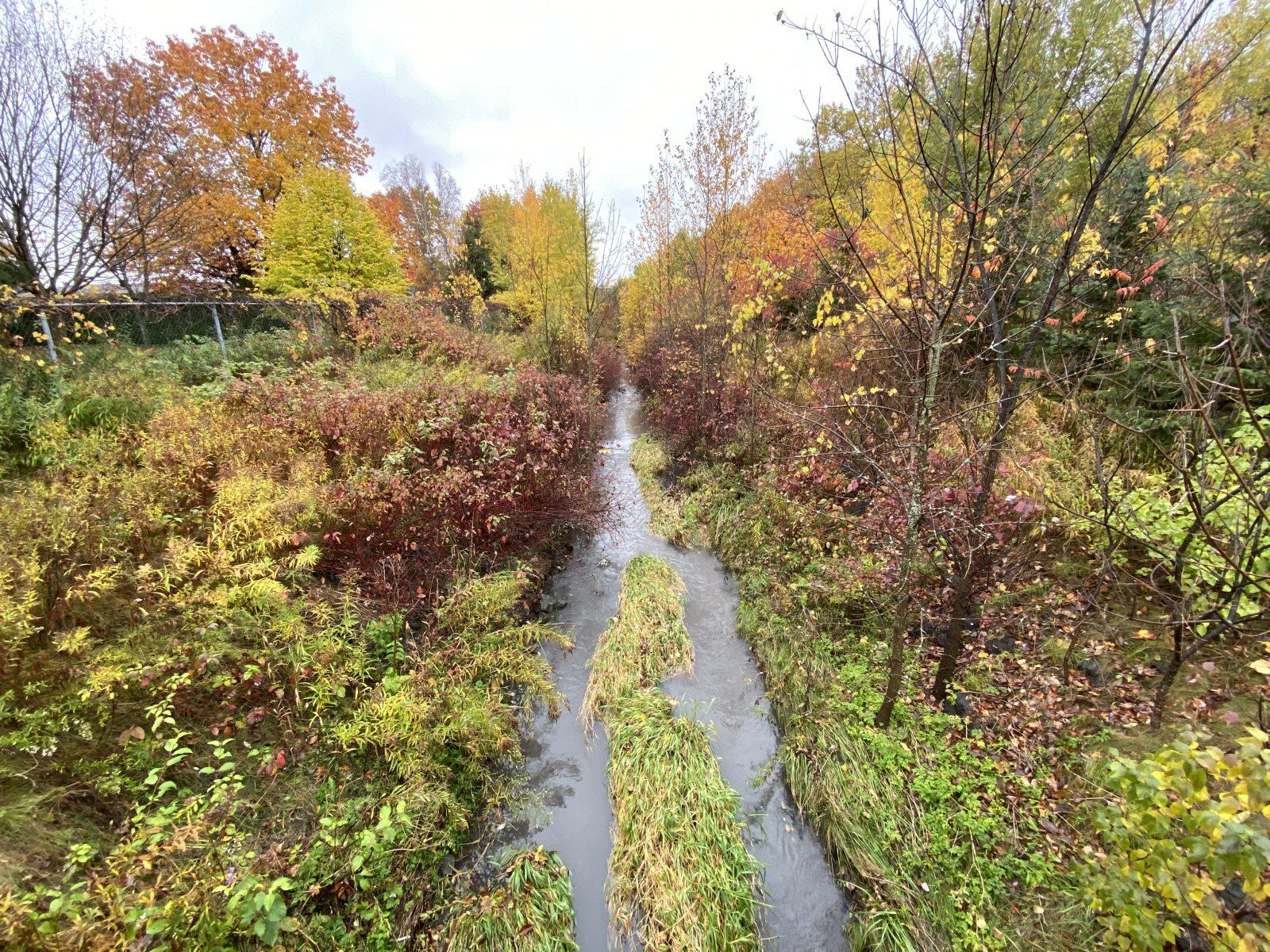 Une étude sera réalisée au ruisseau Cardin