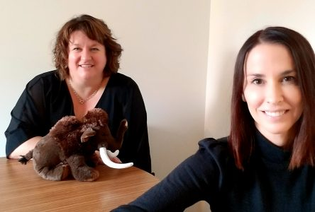 La gestion du stress des intervenants et jeunes en centre jeunesse prise en charge