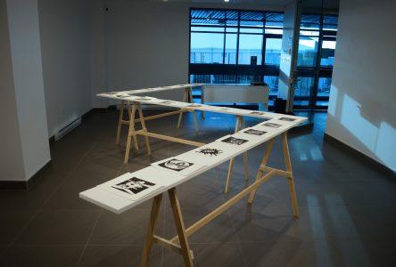 Deux expositions à l'Espace-galerie du Cégep de Drummondville