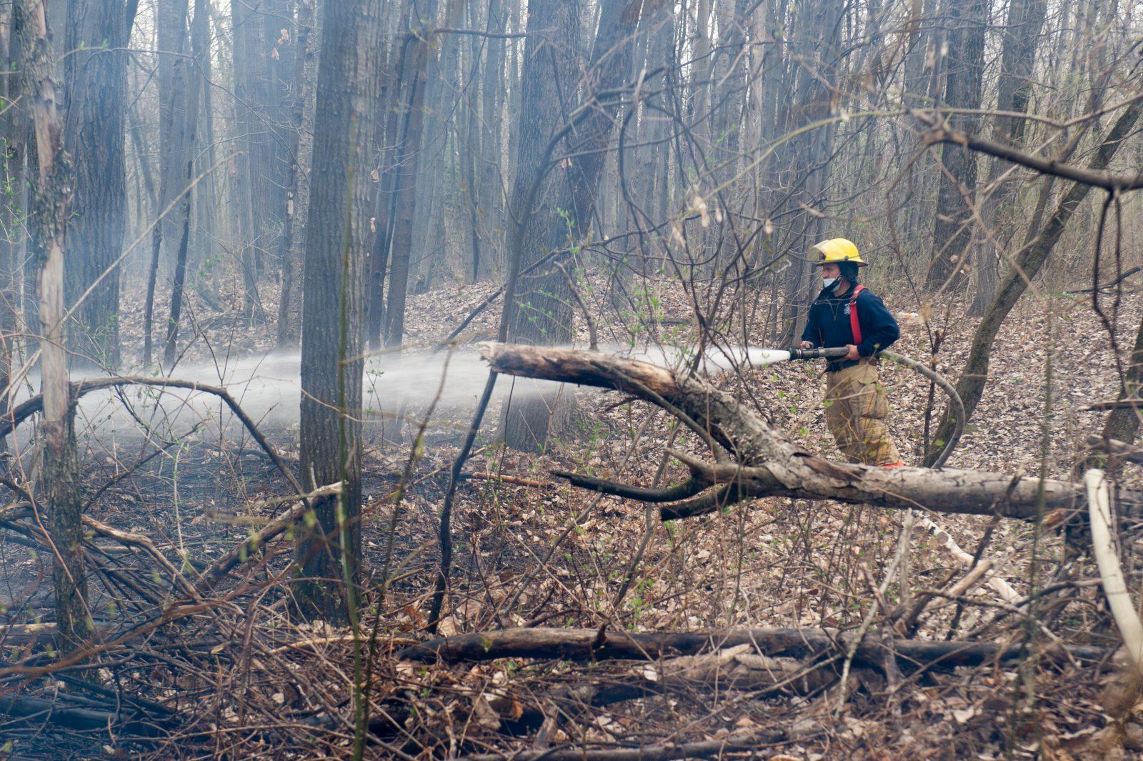 Incendie suspect dans un boisé de la rue Farrell